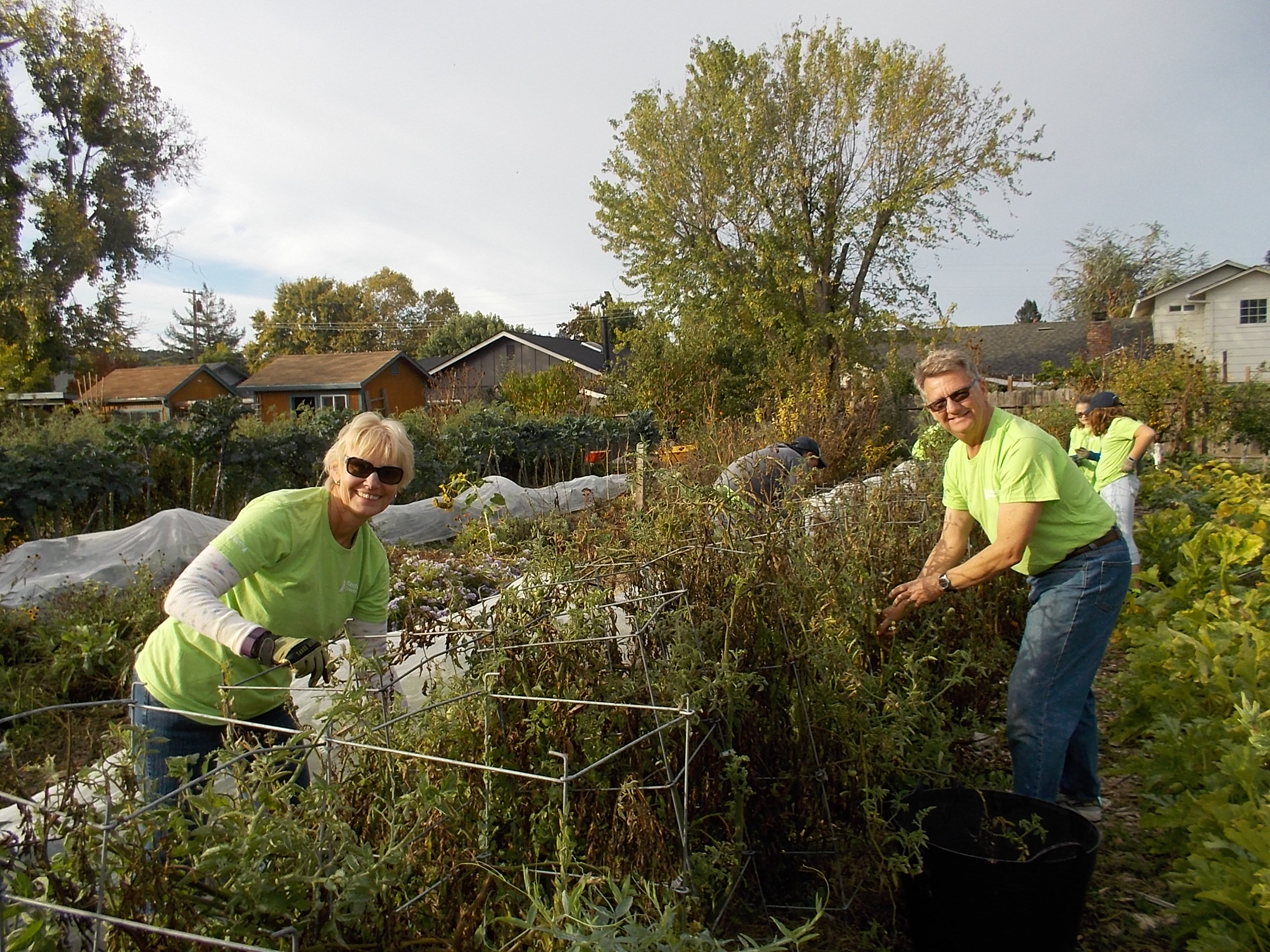 RCU Gives Back to Community Garden