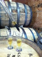 barrel tasting of cider
